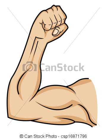 Muscle Clip Art & Muscle Clip Art Clip Art Images.