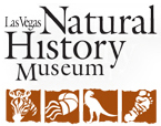 1000+ ideas about Natural History Museum La on Pinterest.