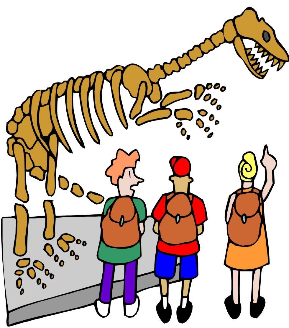 Dinosaur museum clipart.