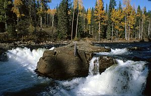 Murtle River.