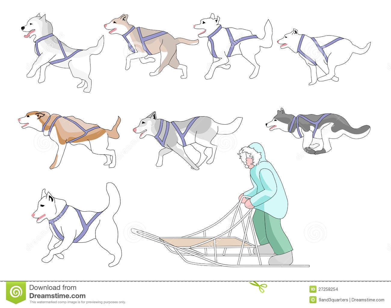 Musher Stock Illustrations.