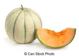 Cantaloupe Images and Stock Photos. 9,033 Cantaloupe photography.