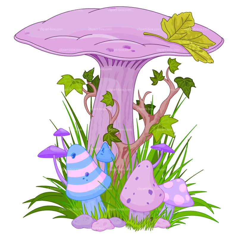 Magical Mushrooms and Fairies.