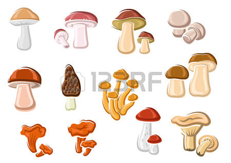 1,919 Mushroom Cap Cliparts, Stock Vector And Royalty Free.