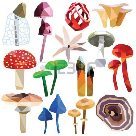 116 Death Cap Mushroom Stock Illustrations, Cliparts And Royalty.