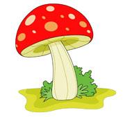 Free Mushrooms.