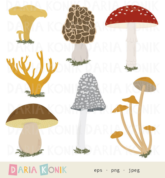 Mushrooms Clip Art Set.