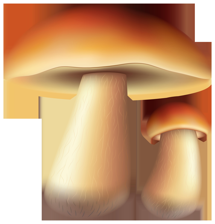 Mushrooms Free PNG Clip Art Image.