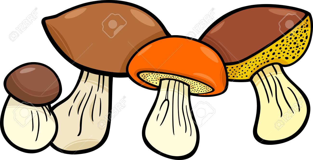 Cartoon Illustration Of Mushrooms Food Objects Group Royalty Free.