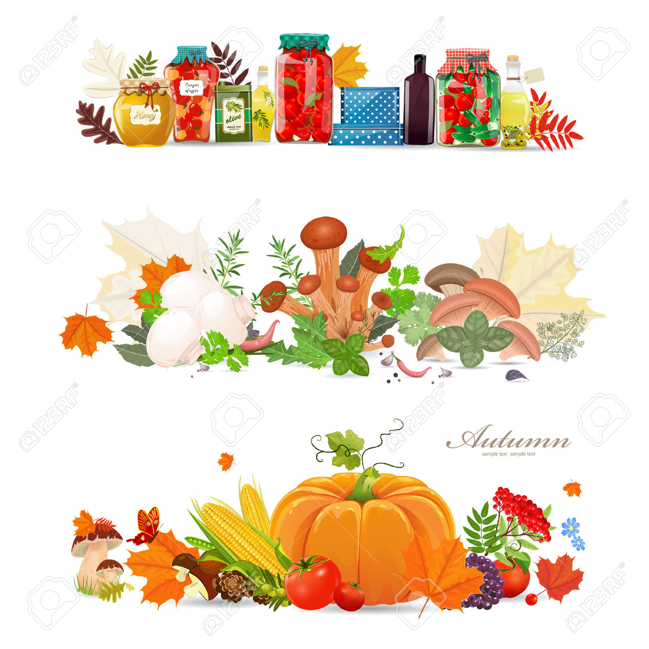 Collection Borders With Preserve Food And Mushrooms. Autumn.