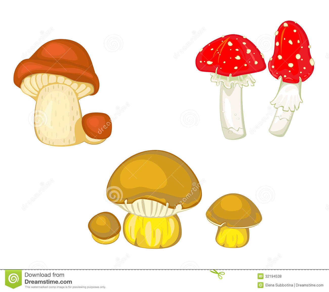 Mushrooms And Toadstools Royalty Free Stock Photos.