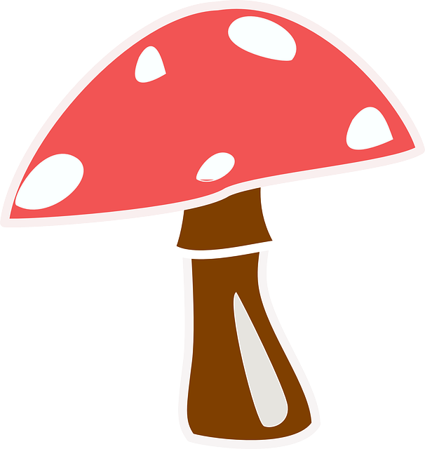Free vector graphic: Mushroom, Toadstool, Red, Cap, Top.