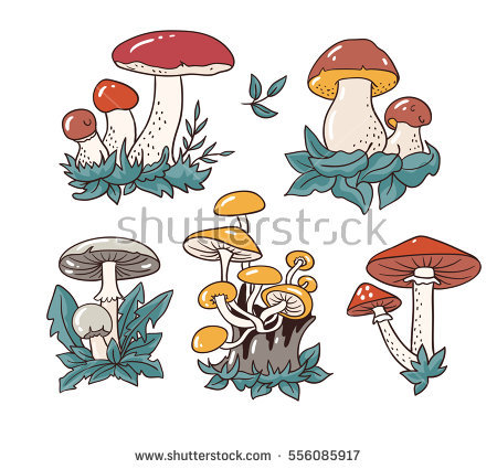 Toadstool Stock Images, Royalty.