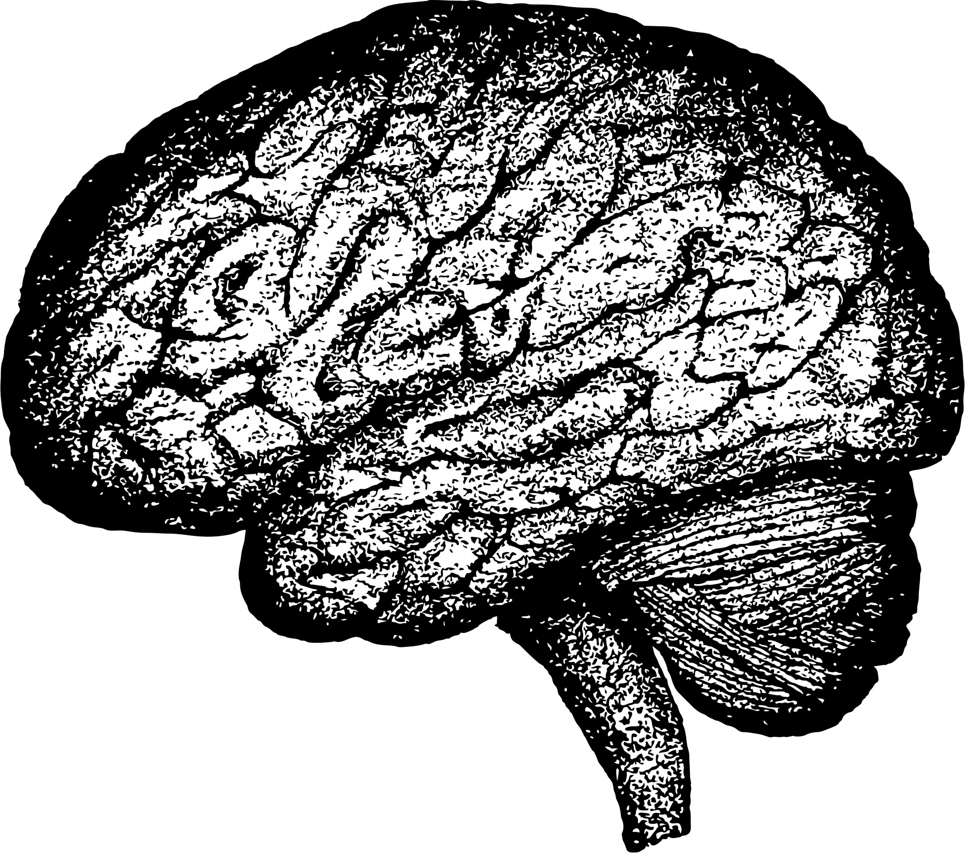 Music And The Brain: Top 10 Ways To Make Your Listeners Love Your.
