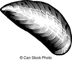 Mussels Stock Illustrations. 1,083 Mussels clip art images and.