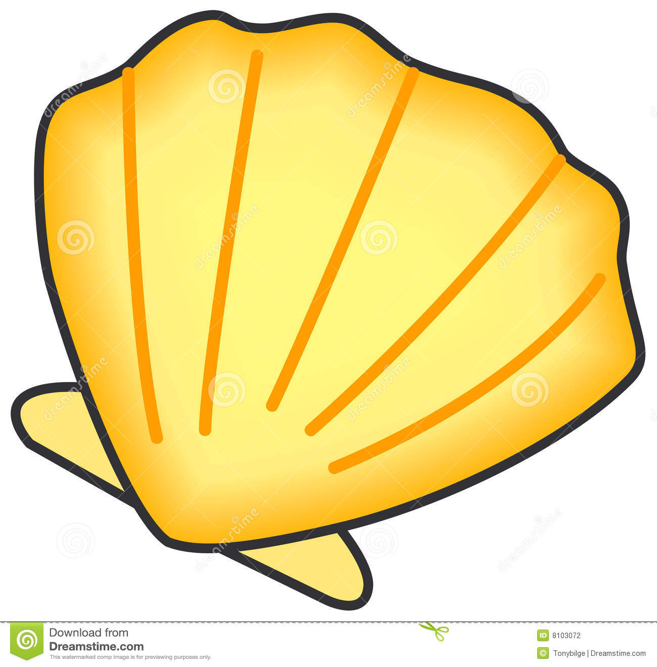 Shell Of Clam. Stock Photography.