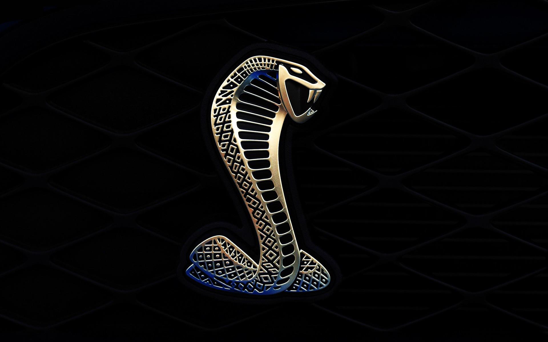 Mustang Logo Wallpaper (63+ images).