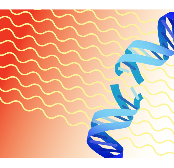 What is Mutation?.