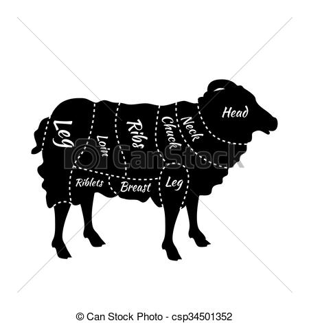 Clipart Vector of Cuts of Lamb or Mutton Diagram.