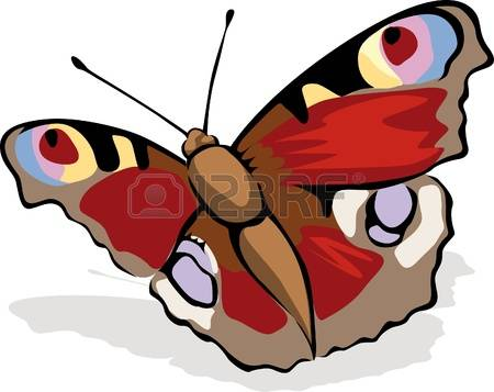 461 Peacock Butterfly Stock Vector Illustration And Royalty Free.