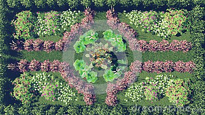 Flower Garden Top View Stock Photo.