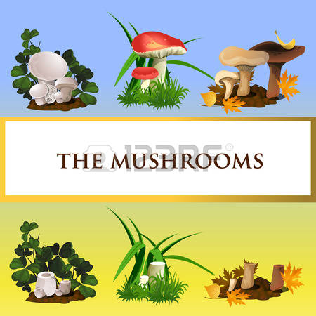 171 Mycology Cliparts, Stock Vector And Royalty Free Mycology.