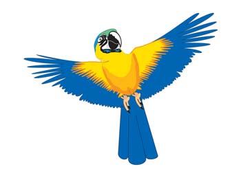 Myna bird 2, Vector File.