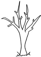 Bare Tree Clip Art.