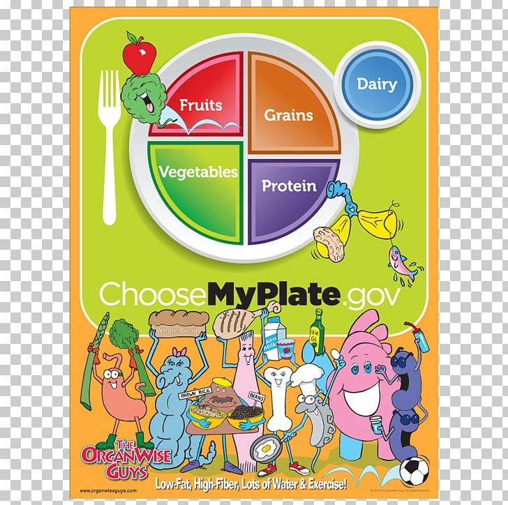 MyPlate Nutrition Food Pyramid Food Group MyPyramid PNG.