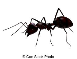 Ants Illustrations and Stock Art. 5,727 Ants illustration and.