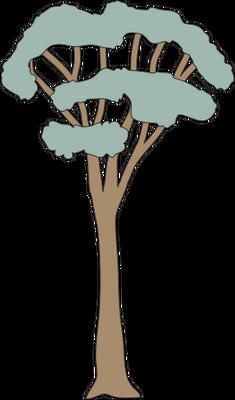 Eucalyptus spp. (Eucalypt) 2.