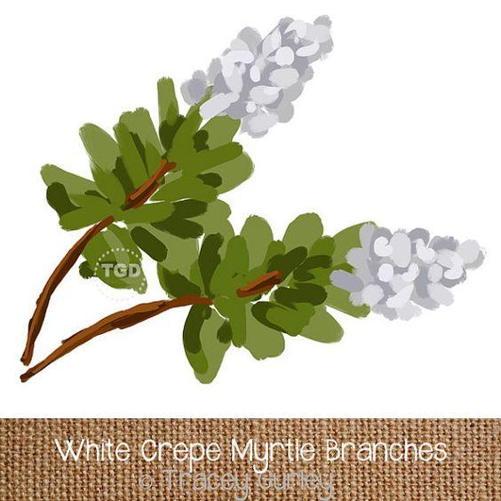 White Crepe Myrtle Art, Digital Download, Crape Myrtle Clip Art.
