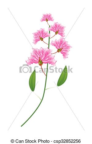 Clipart Vector of Bunch of Pink Crape Myrtle Flowers on White.