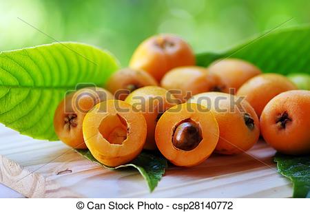 Imágenes de níspero, aislado, fruta, verde, Plano de fondo, Loquat.