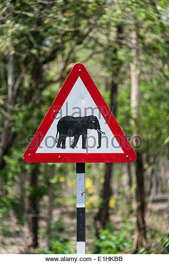 Animal Sign India Stock Photos & Animal Sign India Stock Images.