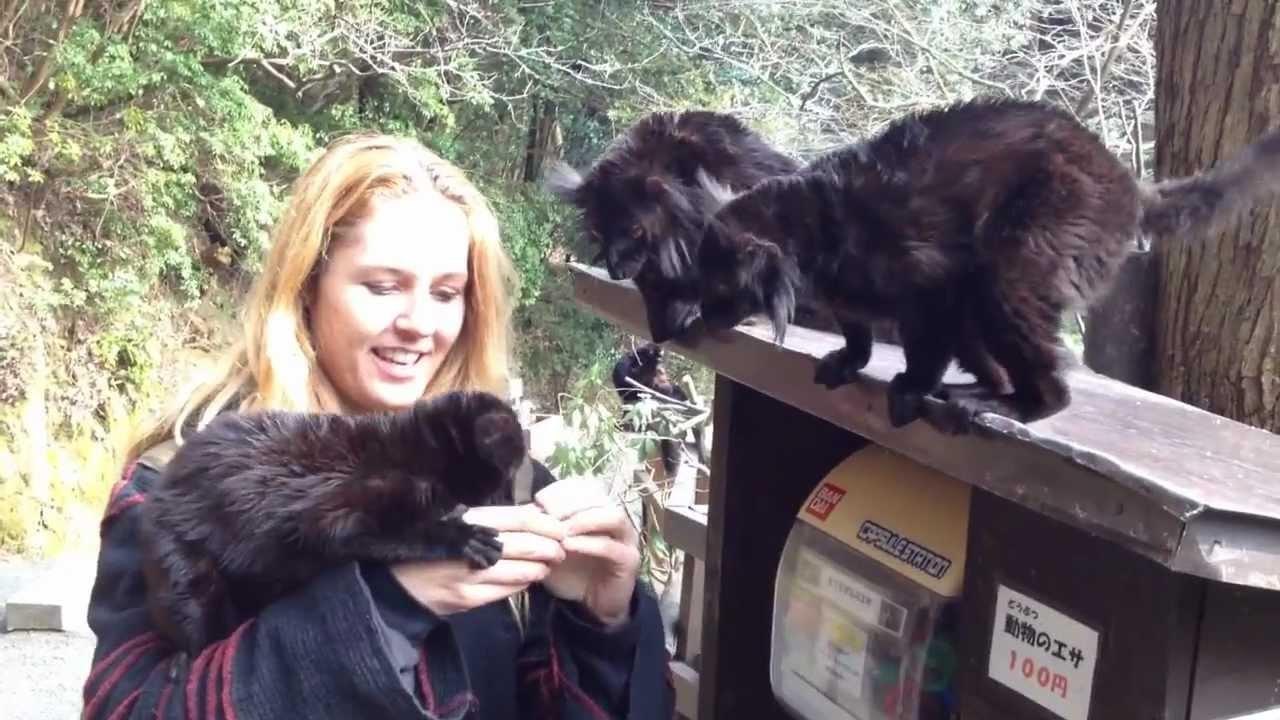 Animal Encounters at the Bio.