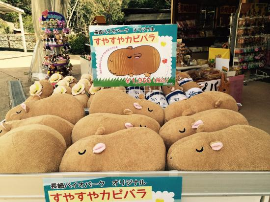 Lots of capybara stuff in the gift shop.