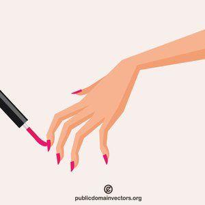 Nail painting vector image.