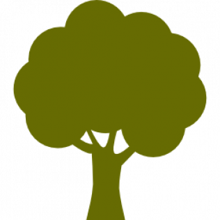 Tree Services, Removal, Logging & More.