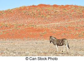 Namib desert Illustrations and Clipart. 80 Namib desert royalty.