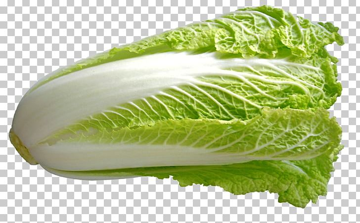 Chinese Cuisine Chinese Cabbage Vegetable Napa Cabbage PNG.
