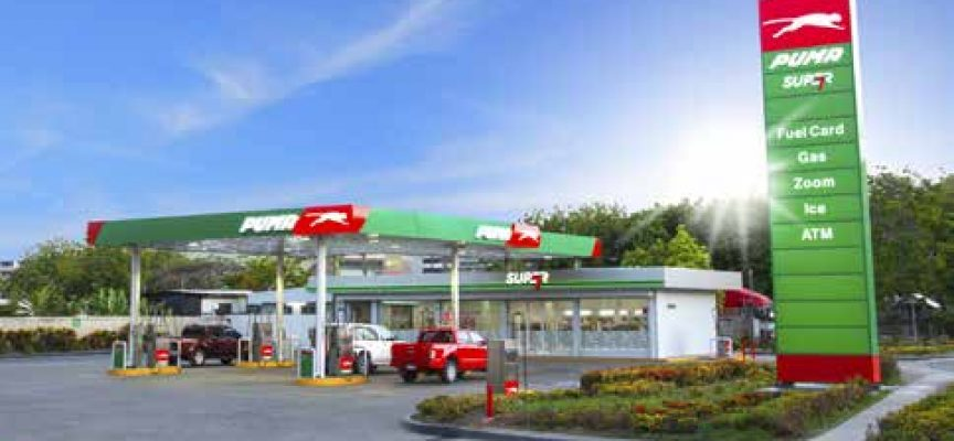 Puma looks to build PNG into regional petroleum hub.