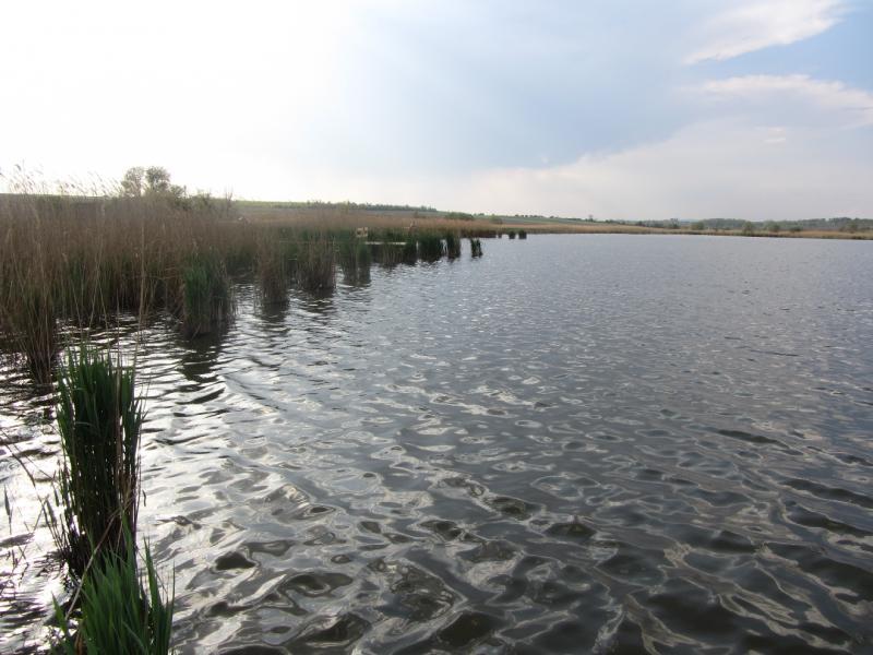 Biató (Biató Carp Lake).