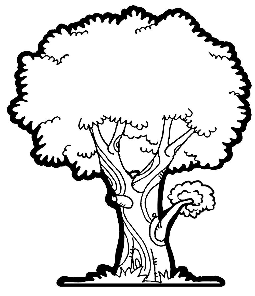 Narra tree clipart black and white.