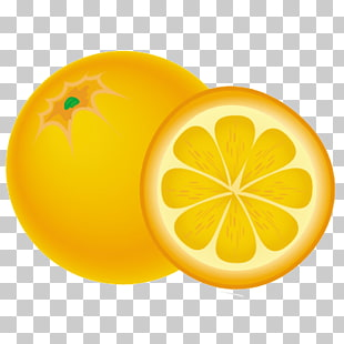 48 Naranja PNG cliparts for free download.