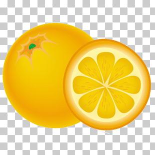 48 Naranja PNG cliparts for free download.