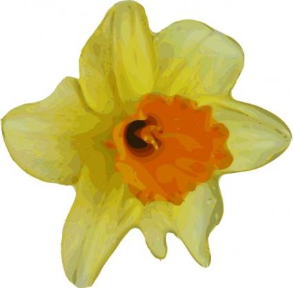 Narcissus flower clip art.