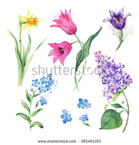 Vector Images, Illustrations and Cliparts: Spring floral set.
