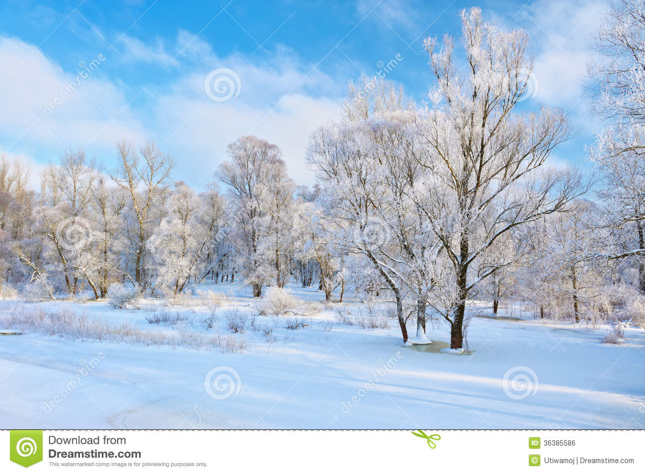 Beautiful Snowy Landscape By The Narew River Valley. Royalty Free.
