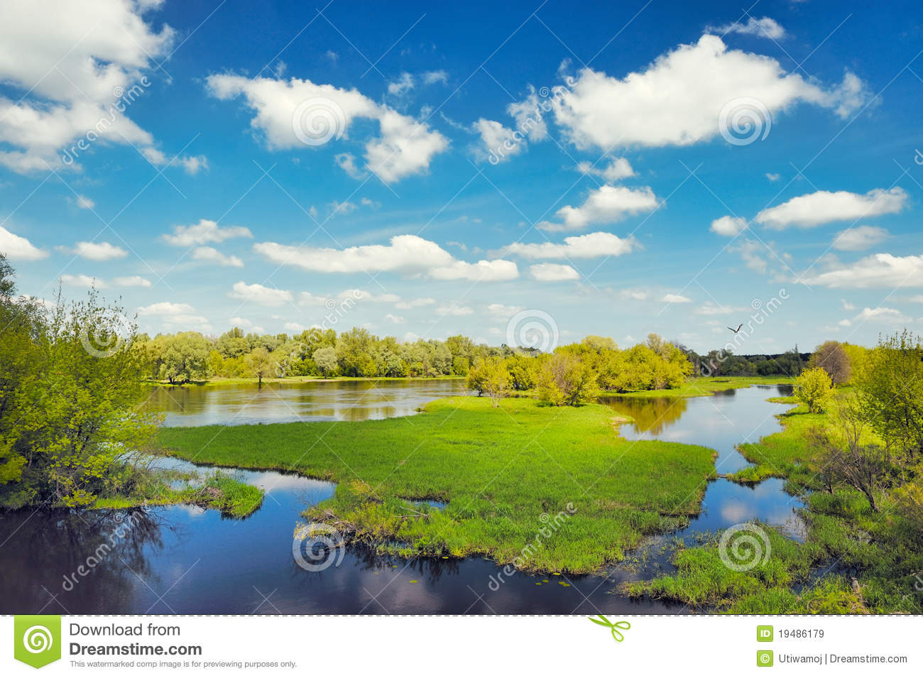 River Flood Waters Background, Narew, Poland Royalty Free Stock.